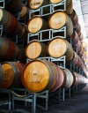 daily_public_winery_tours_yarra_valley_6